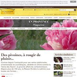 Les Pivoines Rivière, producteurs de pivoines à Crest en Provence