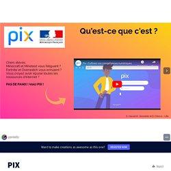 Exemple de présentation de Pix by Delphine Chiocci on Genially / 3 diapos très claires