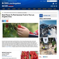 Best Places To Pick Summer Fruit In The Los Angeles Area
