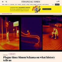 Plague time: Simon Schama on what history tells us