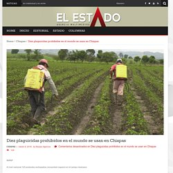 Diez plaguicidas prohibidos en el mundo se usan en Chiapas