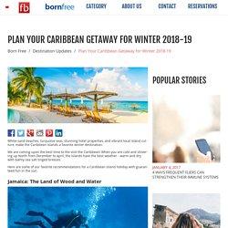 Plan Your Caribbean Getaway for Winter 2018-19 - Born Free - Fare Buzz Blog