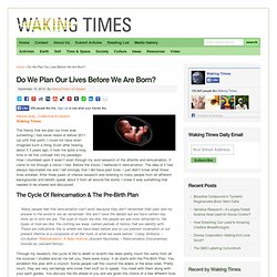 Do We Plan Our Lives Before We Are Born? - Waking Times