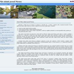 Plán oblasti povodí Moravy