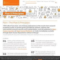Plan S Principles
