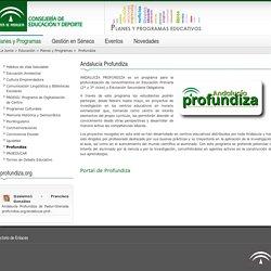 Planes y programas - Profundiza - Consejería de Educación