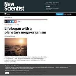 Life began with a planetary mega-organism - life - 25 November 2011