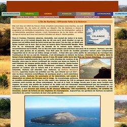 Animal -> Biotopes -> L'île de Surtsey : offrande faite à la science
