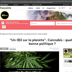 Cannabis : quelle bonne politique ? - France 2 - 18 mai 2017 - En replay