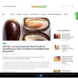 Dattes : le plus sain de fruits sur la planète qui peut guérir de nombreuses maladies