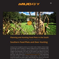 Planning and Hunting Food Plots in the South