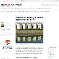 THE CONVERSATION 28/11/12 Using urban planning to reduce mosquito-borne disease