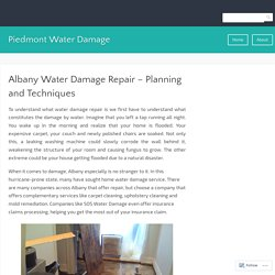 Albany Water Damage