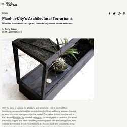 Plant-in-City's Architectural Terrariums