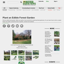 Plant an Edible Forest Garden