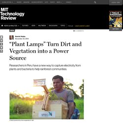 """Plant Lamps"" Turn Dirt and Vegetation into a Power Source"