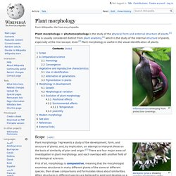 Plant morphology - Wikipedia