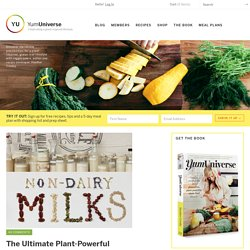 Plant-Powerful Dairy-Free Milks - YumUniverse