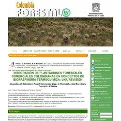 INTEGRACIÓN DE PLANTACIONES FORESTALES COMERCIALES COLOMBIANAS EN CONCEPTOS DE BIORREFINERÍA TERMOQUÍMICA: UNA REVISIÓN