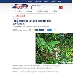 Vamos plantar água? Água se planta com agroflorestas