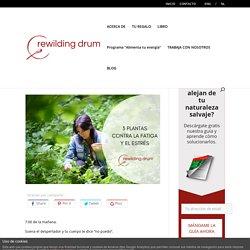 3 PLANTAS CONTRA LA FATIGA Y EL ESTRÉS - Rewilding Drum