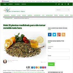 Mais 35 plantas medicinais para não tomar remédio toda hora - The Greenest Post