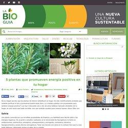 5 plantas que promueven energía positiva en tu hogar
