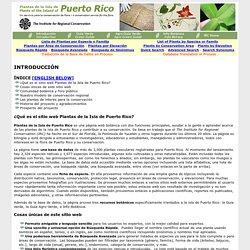 Plantas de Puerto Rico/Plants of Puerto Rico