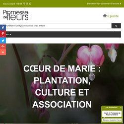 Cœur de Marie : plantation, culture et association / Blog Promesse de fleurs