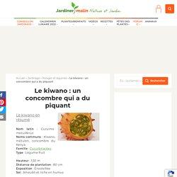 Kiwano : plantation, entretien, récolte et conservation