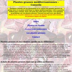 plantation et culture des plantes grasses