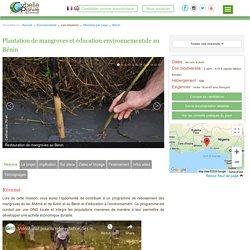 Plantation de Mangroves au Bénin