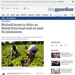Biofuels boom in Africa as British firms lead rush on land for plantations