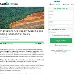 texte de la pétition: Plantations Are Illegally Clearing and Killing Indonesia's Forests!