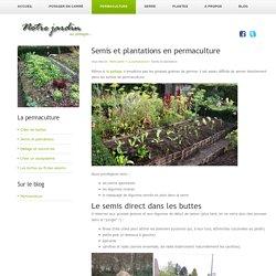 Les plantations et semis spontanés en permaculture