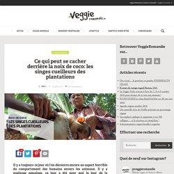 Véganisme vegans végétaliens – VeggieRomandie.ch – Lausanne Genève Sion Fribourg Neuchâtel – cuisine santé actualités animaux