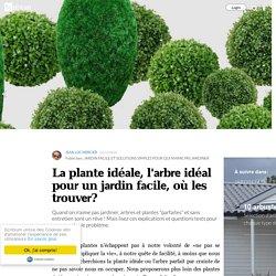 La plante idéale, l'arbre idéal pour un jardin facile, où les trouver?