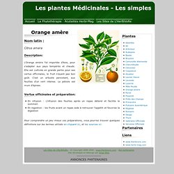 Plante médicinale - orange_amere - fiche technique