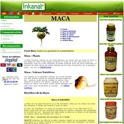 Huiles lotions pearltrees for Acheter des plantes par internet