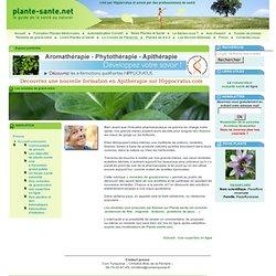Plante et santé : Les remèdes de grand-mère