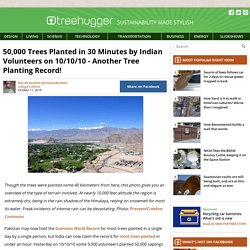 50,000 Trees Planted in 30 Minutes by Indian Volunteers on 10/10/10 - Another Tree Planting Record!