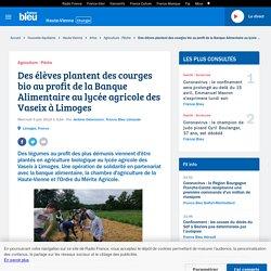 FRANCE BLEU 05/06/19 Des élèves plantent des courges bio au profit de la Banque Alimentaire au lycée agricole des Vaseix à Limoges