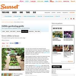 Planter Boxes for Edibles