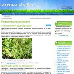 Planter des framboisiers « Arbres Et Arbustes