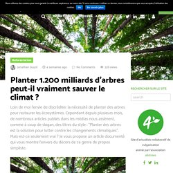 Planter 1.200 milliards d'arbres peut-il vraiment sauver le climat ?
