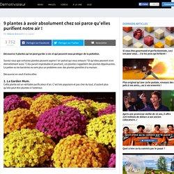 9 plantes à avoir absolument chez soi parce qu'elles purifient notre air!