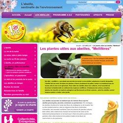 Plantes, amies des abeilles