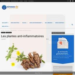 Les plantes anti-inflammatoires