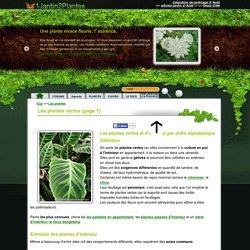 149 plantes vertes d'intérieur dont plantes vertes dépolluantes