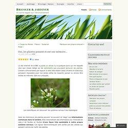 Oui, les plantes pensent et ont une mémoire… « Bricoler & jardiner